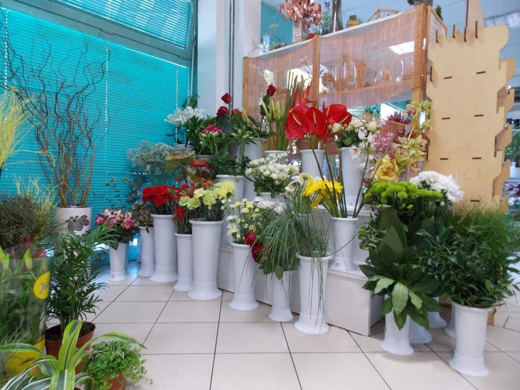 Cvetje in steklo, Apartmaji na otoku Krk, angus govedo, izdelki iz konoplje, Kirn gallery photo no.7
