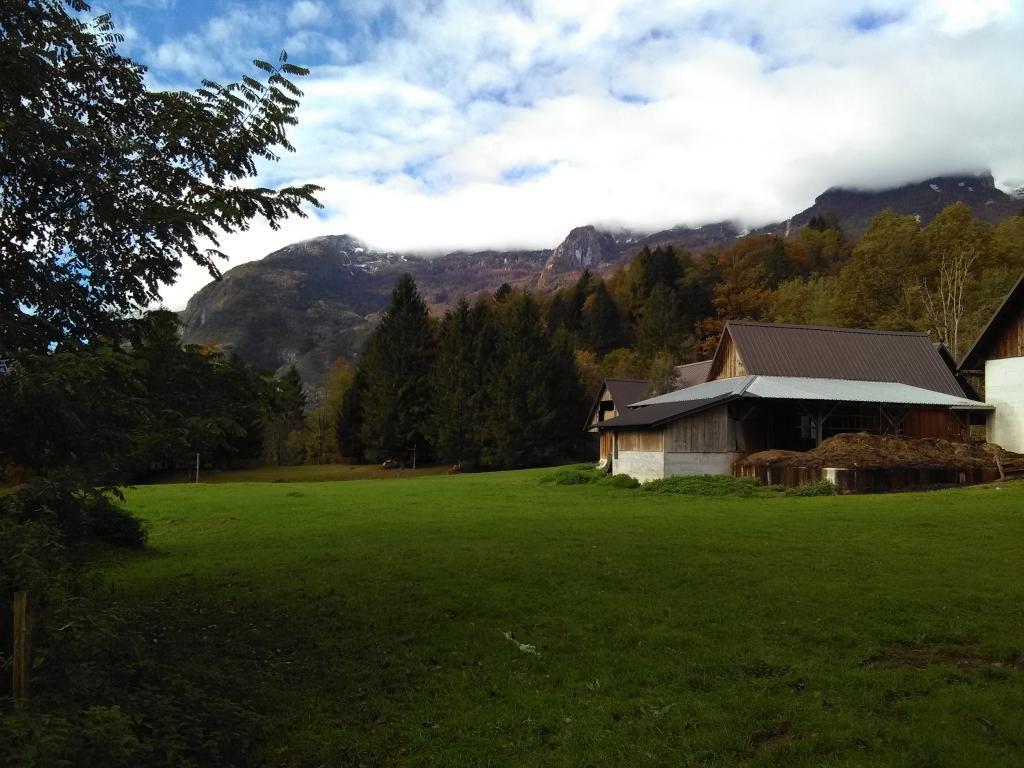 Ekološki bovški ovčji sir - Sirarstvo Ostan Bovec gallery photo no.3