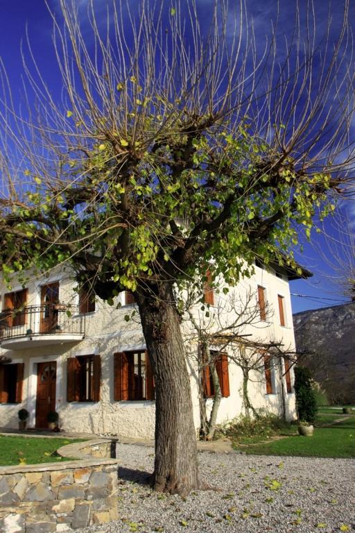 Gostilna in restavracija Mandrija, Nova Gorica gallery photo no.1