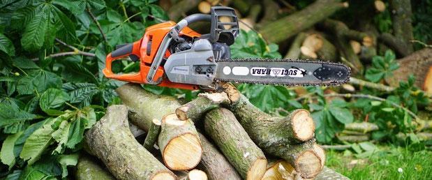 Gozdne storitve, nizke gradnje, Kamnik gallery photo no.2