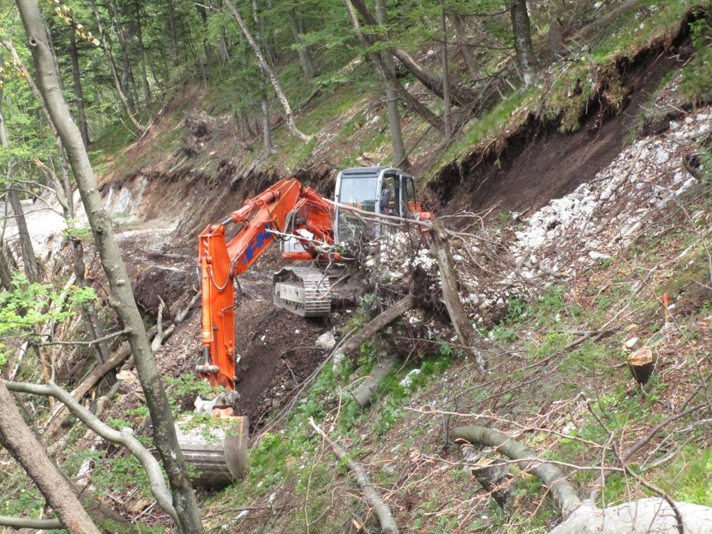 Gradnja gozdnih vlak, gradnja gozdnih cest - BAGOZD d.o.o. gallery photo no.1