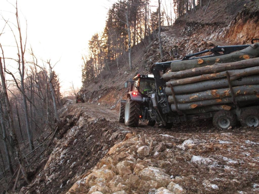 Gradnja gozdnih vlak, gradnja gozdnih cest - BAGOZD d.o.o. gallery photo no.6