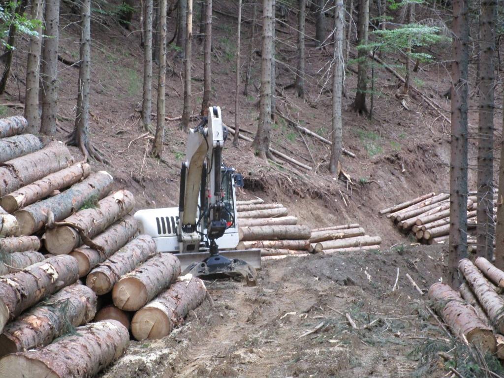 Gradnja gozdnih vlak, gradnja gozdnih cest - BAGOZD d.o.o. gallery photo no.7