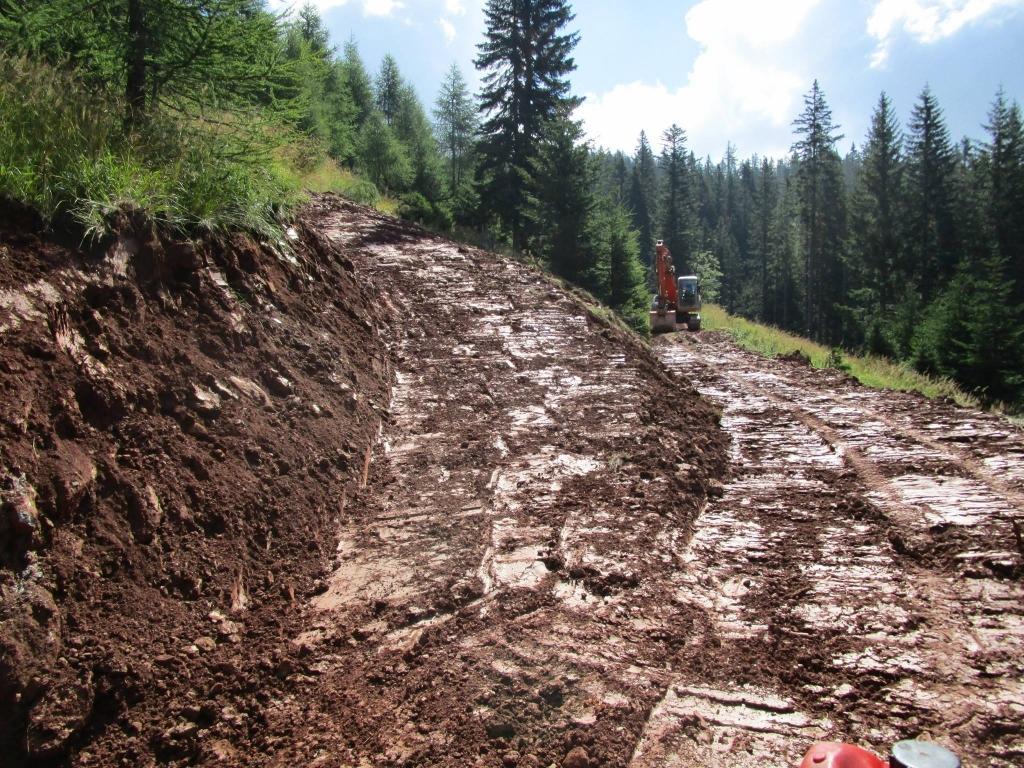 Gradnja gozdnih vlak, gradnja gozdnih cest - BAGOZD d.o.o. gallery photo no.13