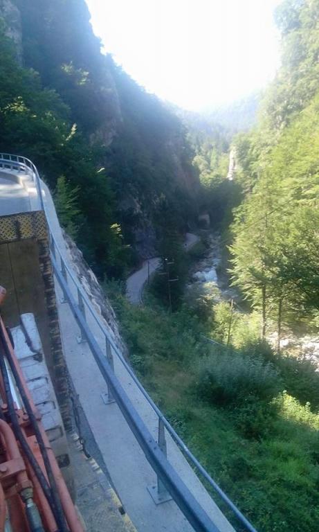 Gradnja gozdnih vlak, gradnja gozdnih cest - BAGOZD d.o.o. gallery photo no.17
