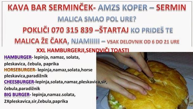 Grill, žar, malice SERMINČEK Koper gallery photo no.11
