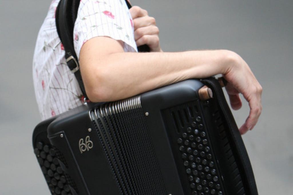 Rihard harmonikar - instrumentalist - avtor - pevec gallery photo no.0