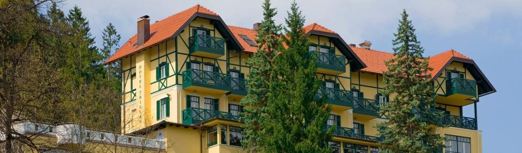 Hotel Triglav Bled gallery photo no.1