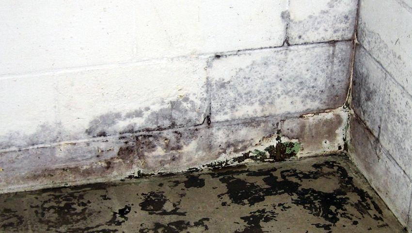 Interventno odmaševanje odtokov, kanalizacije REGENT Obala, Kras, Gorica gallery photo no.8