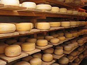 Izdelava mlečnih izdelkov gorenjska, poljanska dolina, predelava mlečnih izdelkov gallery photo no.4