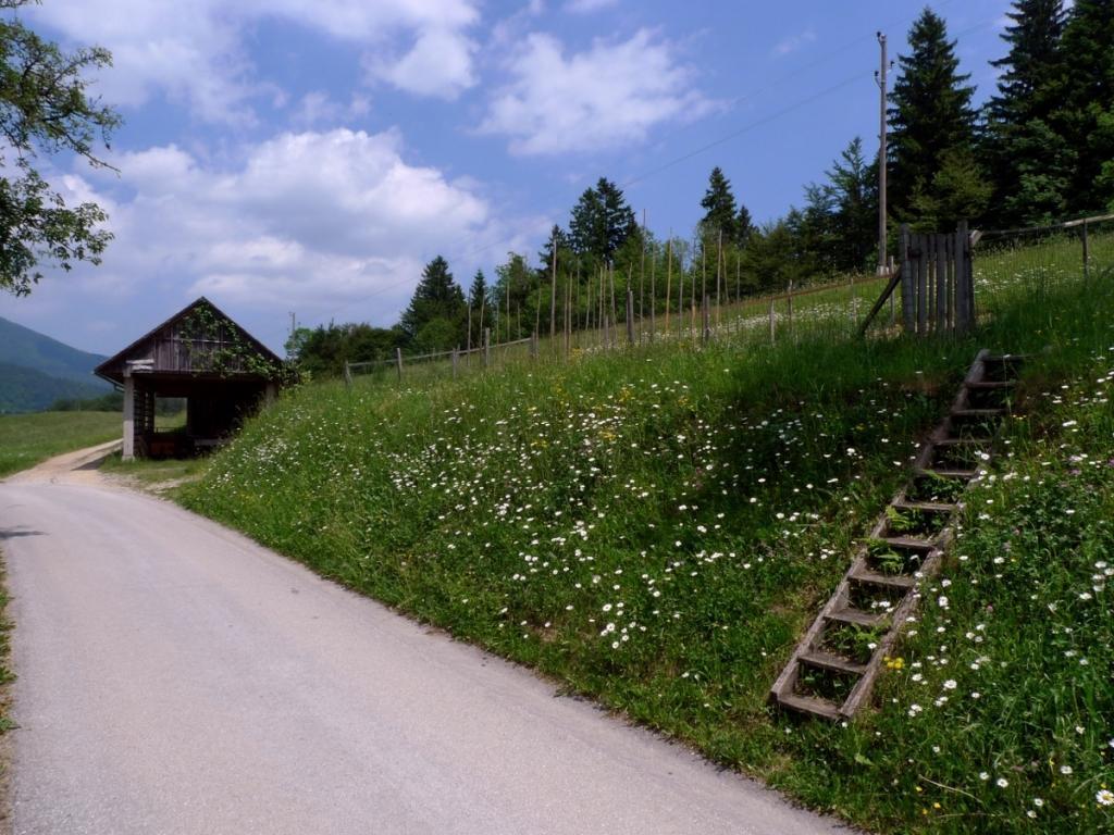Izdelava mlečnih izdelkov gorenjska, poljanska dolina, predelava mlečnih izdelkov gallery photo no.6