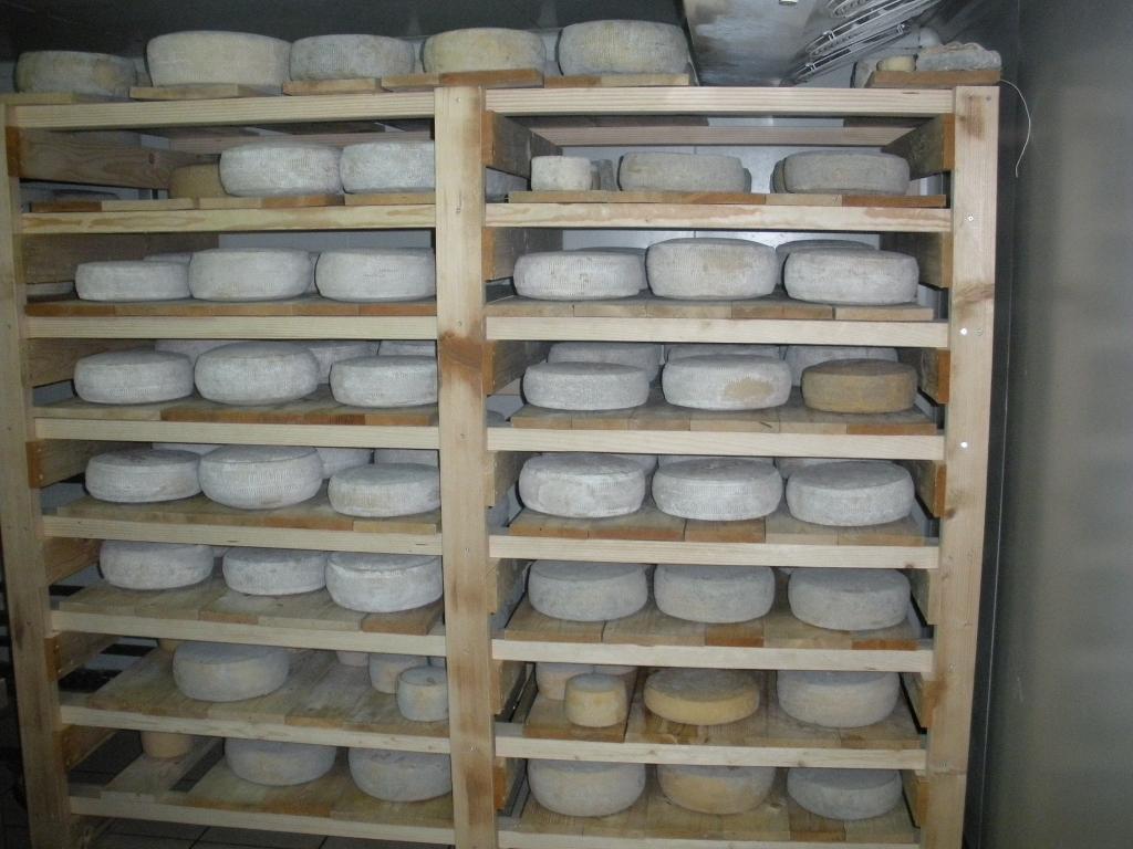 Izdelki iz kozjega mleka, Kmetija Žerjal, Kras gallery photo no.15
