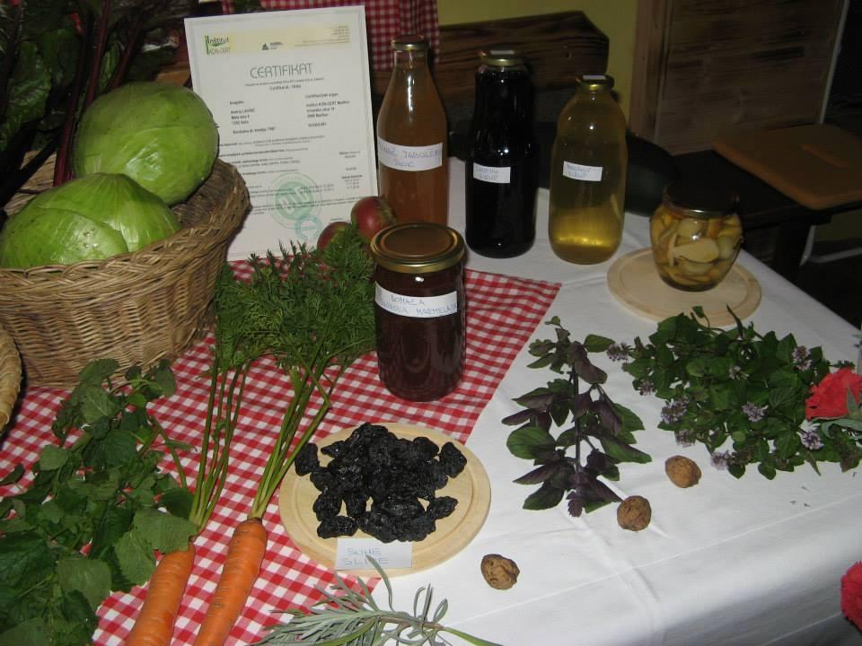 Izletniška kmetija Pr Lavrič, Vače gallery photo no.14