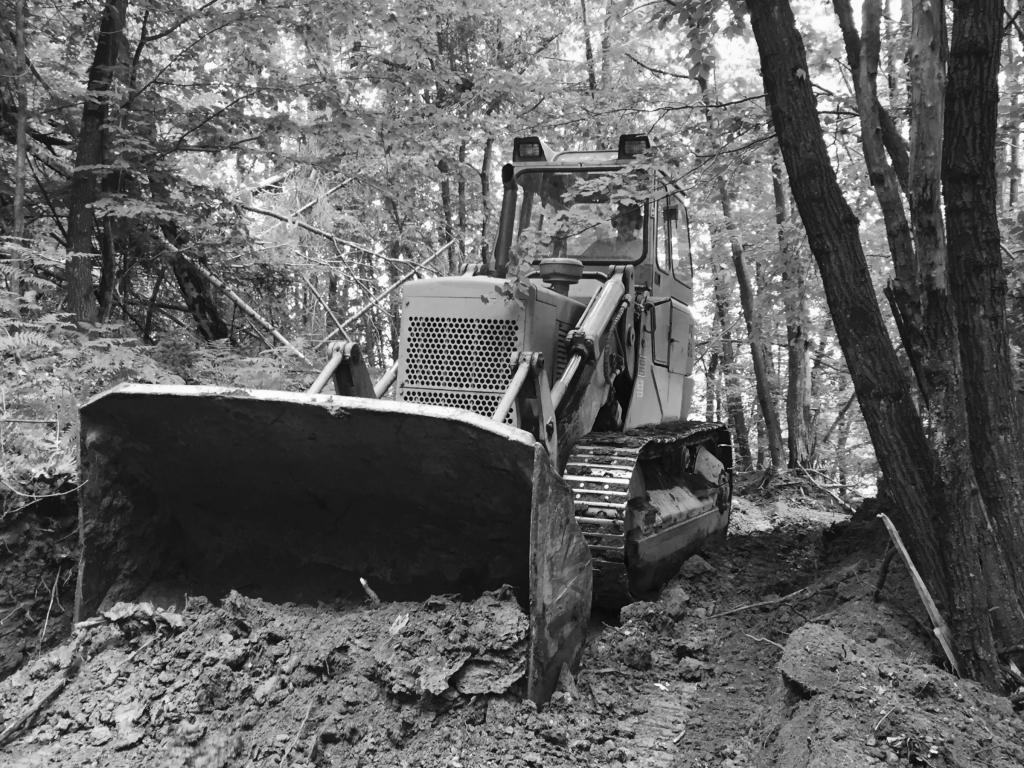 Odkup lesa, odkup hlodovine, sečnja gozda Zasavje gallery photo no.3