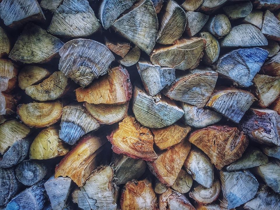 Odkup lesa, odkup hlodovine, sečnja gozda Zasavje gallery photo no.7
