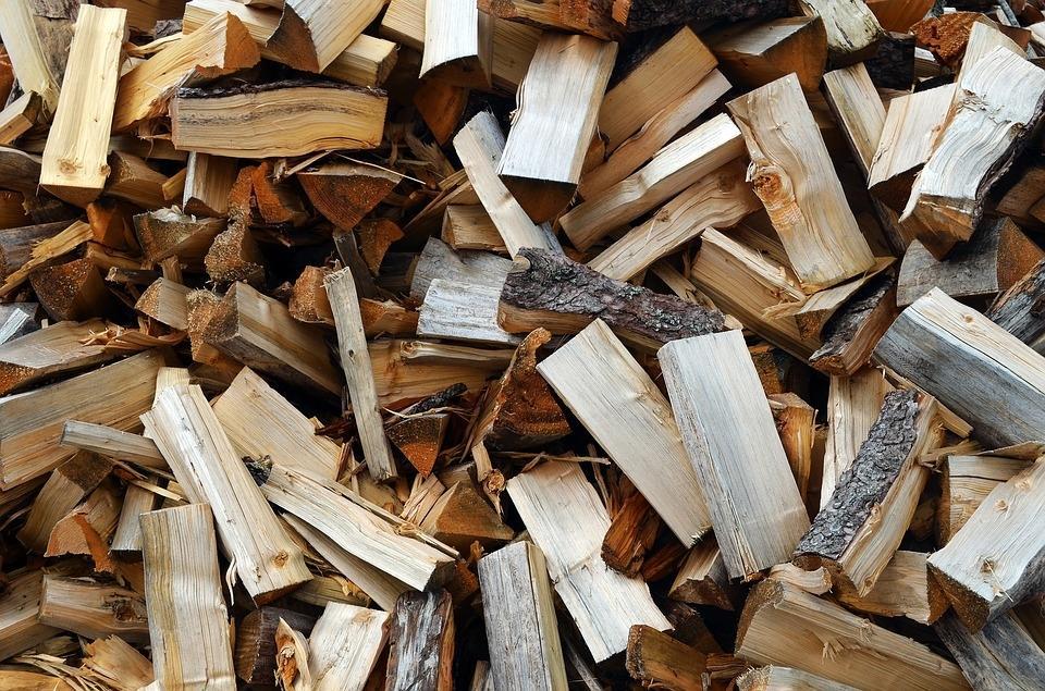 Odkup lesa, odkup hlodovine, sečnja gozda Zasavje gallery photo no.11