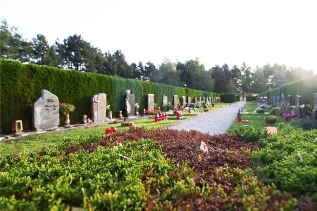 Pogrebna služba, organizacija pogreba, pogreb, urejanje grobov LAVANDA - Dobrova, Polhov Gradec, Horjul, Šentjošt gallery photo no.24