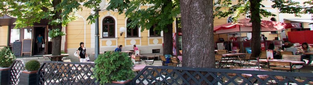 Pivnica, Hotel Zvezda Murska Sobota gallery photo no.0
