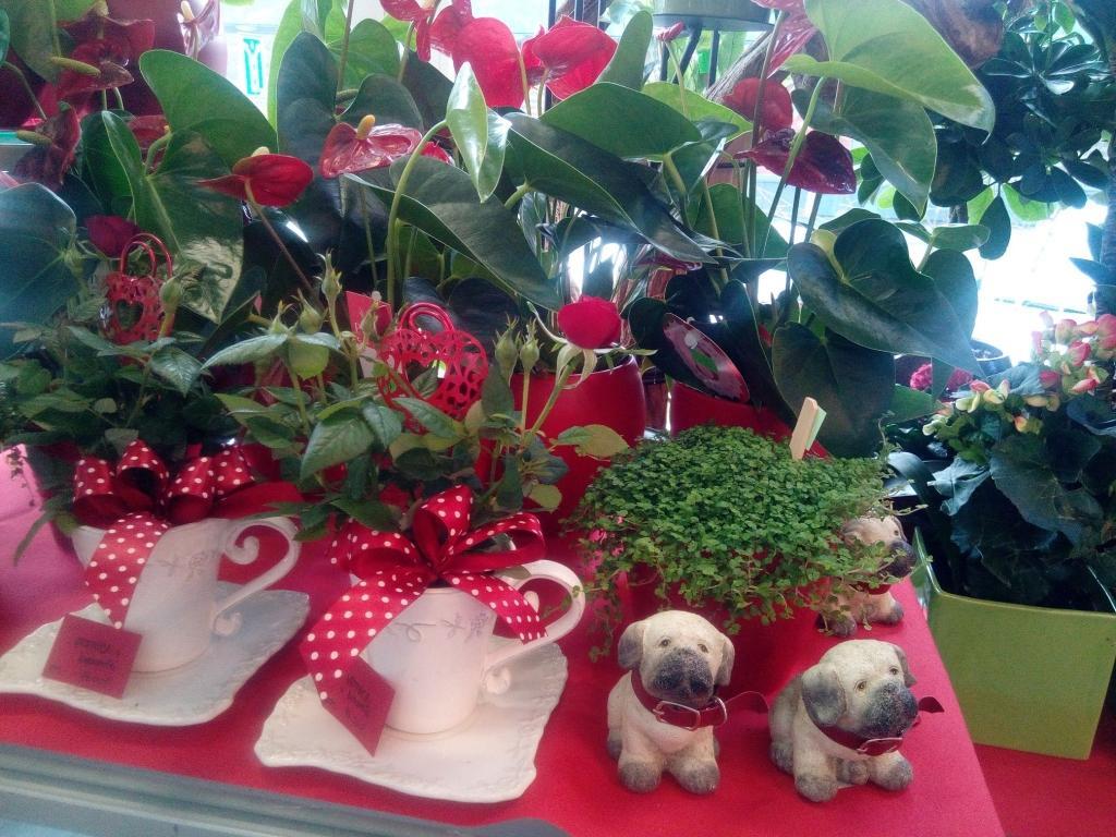 Pogrebno cvetje - Cvetličarna Omers, Domžale gallery photo no.11