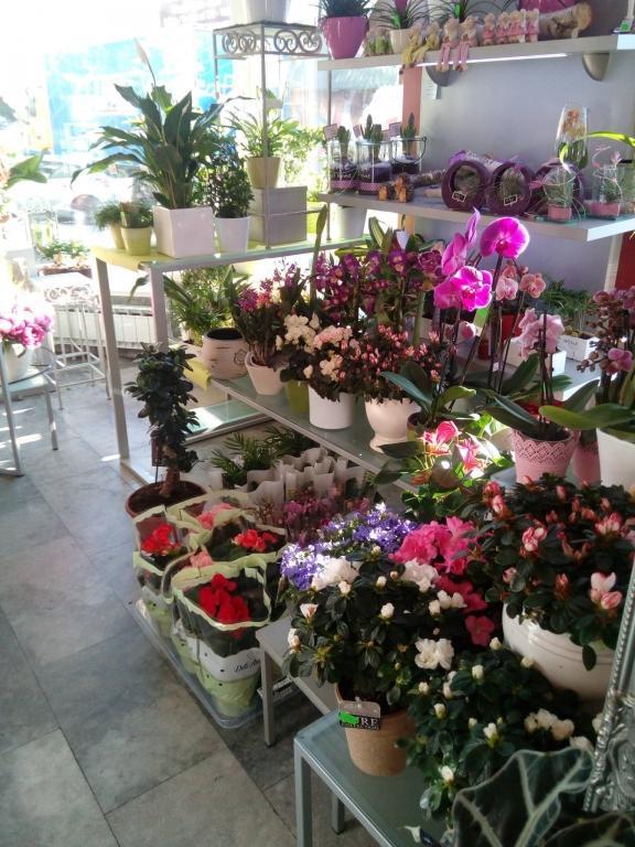 Pogrebno cvetje - Cvetličarna Omers, Domžale gallery photo no.17