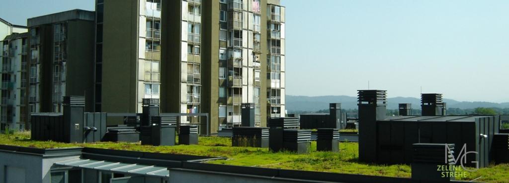 MG Zelene strehe - načrtovanje in izvedba zelenih streh gallery photo no.2