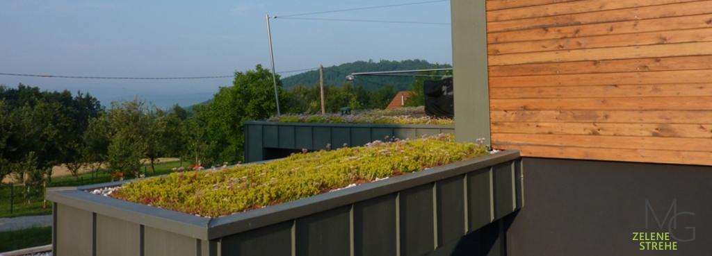 MG Zelene strehe - načrtovanje in izvedba zelenih streh gallery photo no.4
