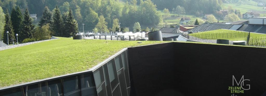 MG Zelene strehe - načrtovanje in izvedba zelenih streh gallery photo no.10
