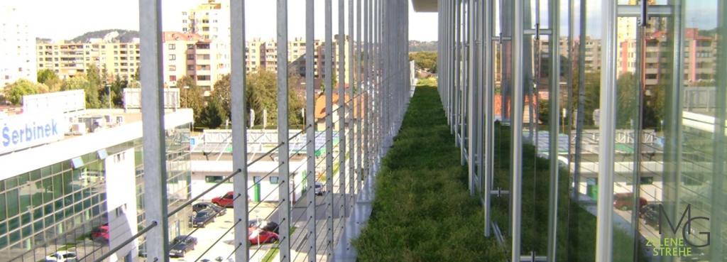 MG Zelene strehe - načrtovanje in izvedba zelenih streh gallery photo no.7