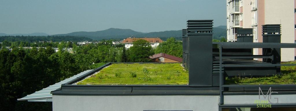 MG Zelene strehe - načrtovanje in izvedba zelenih streh gallery photo no.8