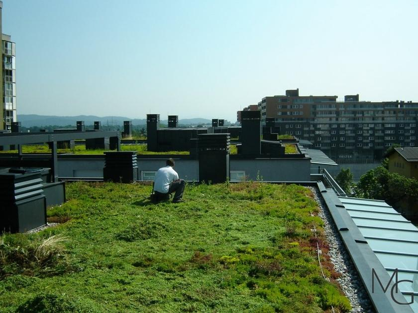 MG Zelene strehe - načrtovanje in izvedba zelenih streh gallery photo no.11