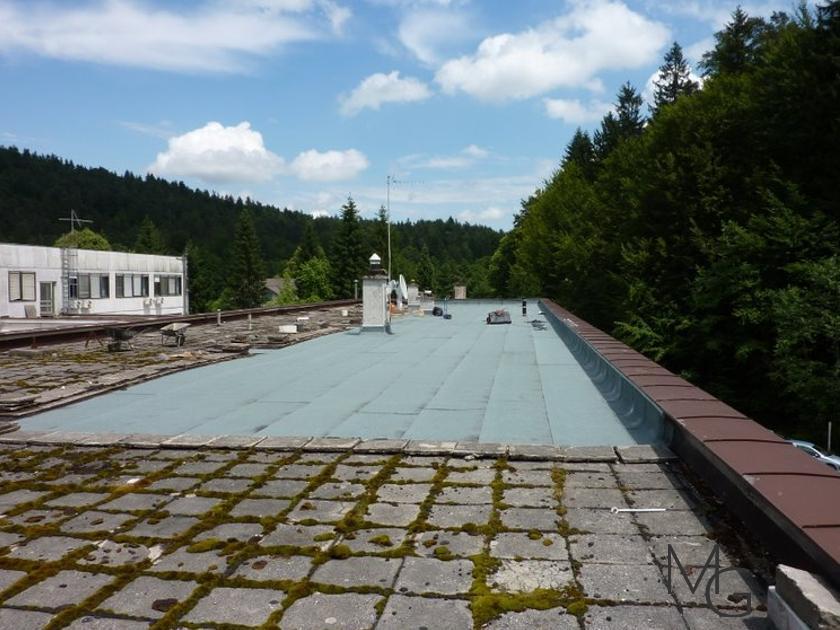 MG Zelene strehe - načrtovanje in izvedba zelenih streh gallery photo no.17