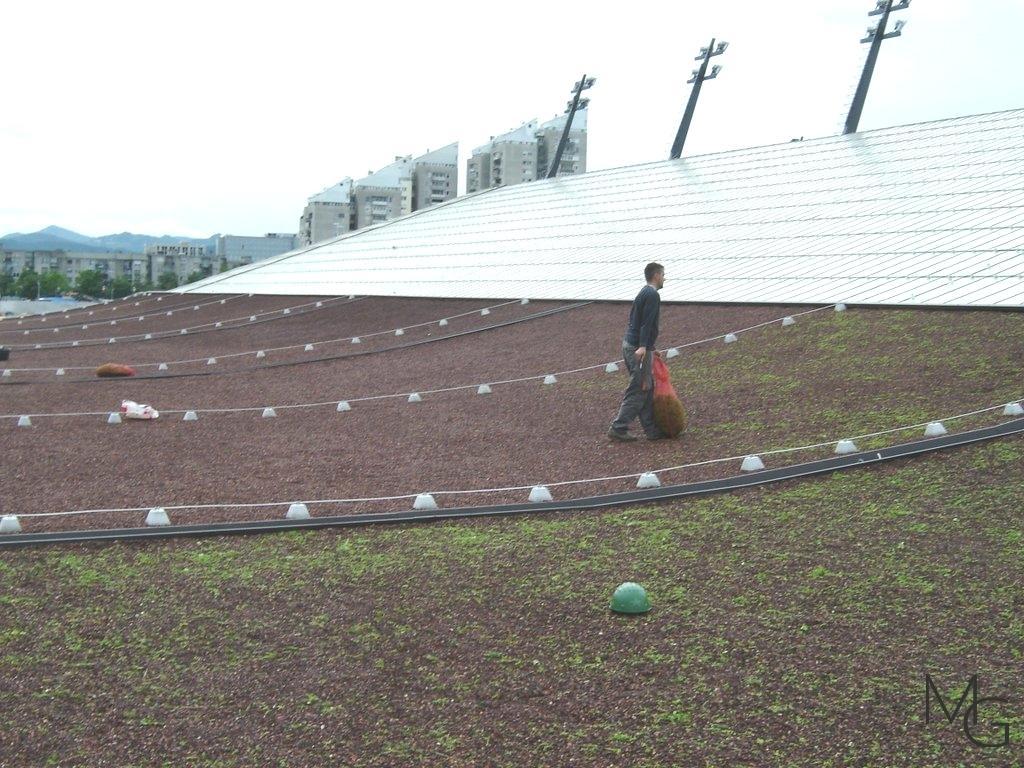 MG Zelene strehe - načrtovanje in izvedba zelenih streh gallery photo no.19