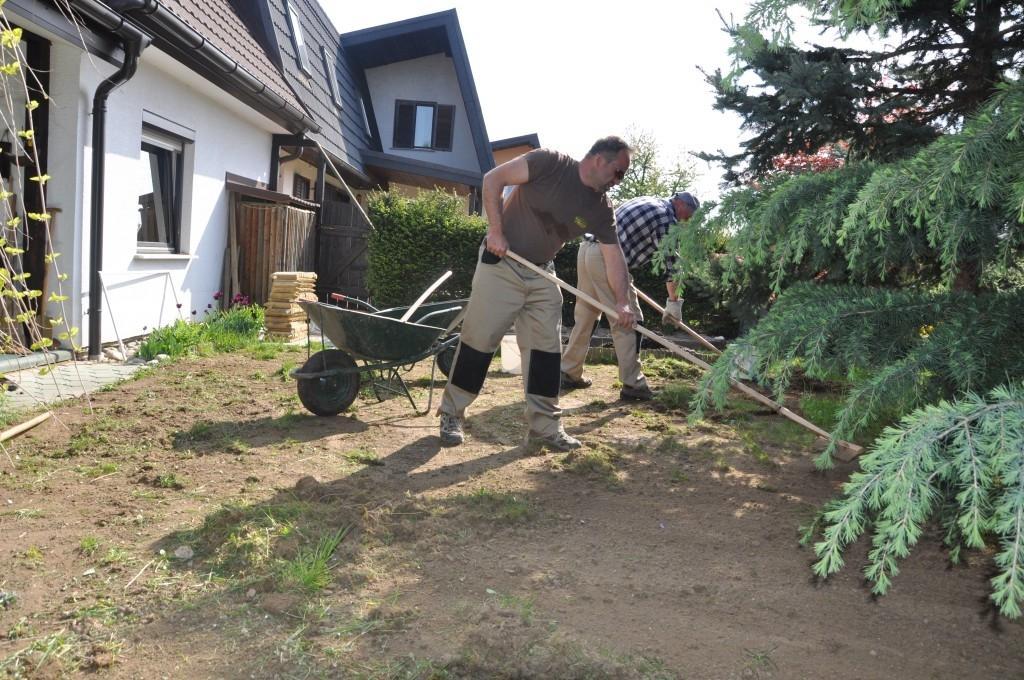 Urejanje, vzdrževanje vrtov, polaganje, setev trave, obrezovanje drevja, žive meje - Vrtnarstvo Šink gallery photo no.3