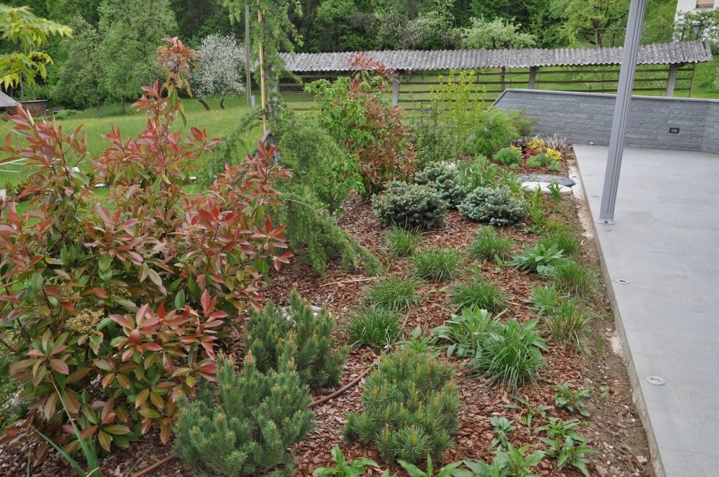 Urejanje, vzdrževanje vrtov, polaganje, setev trave, obrezovanje drevja, žive meje - Vrtnarstvo Šink gallery photo no.7
