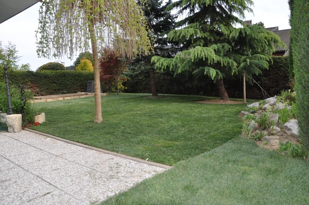 Urejanje, vzdrževanje vrtov, polaganje, setev trave, obrezovanje drevja, žive meje - Vrtnarstvo Šink gallery photo no.6