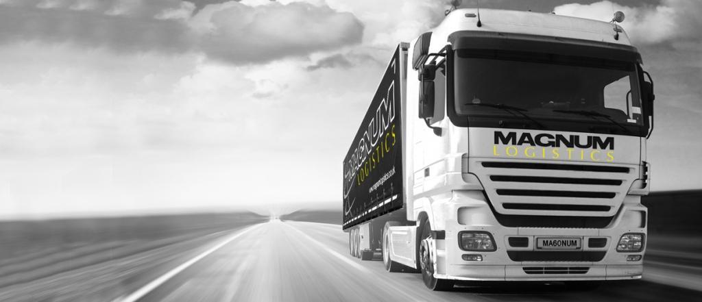 Prevoz kontejnerjev Evropa (Madžarska, Češka, Poljska, Romunija) - MAGNUM LOGISTIKA gallery photo no.1