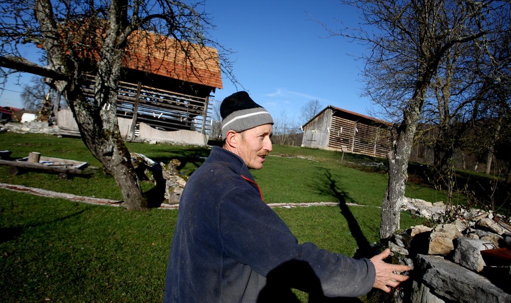 Reja plemenske živine - Kmetija Rajhenav, Kočevje gallery photo no.0