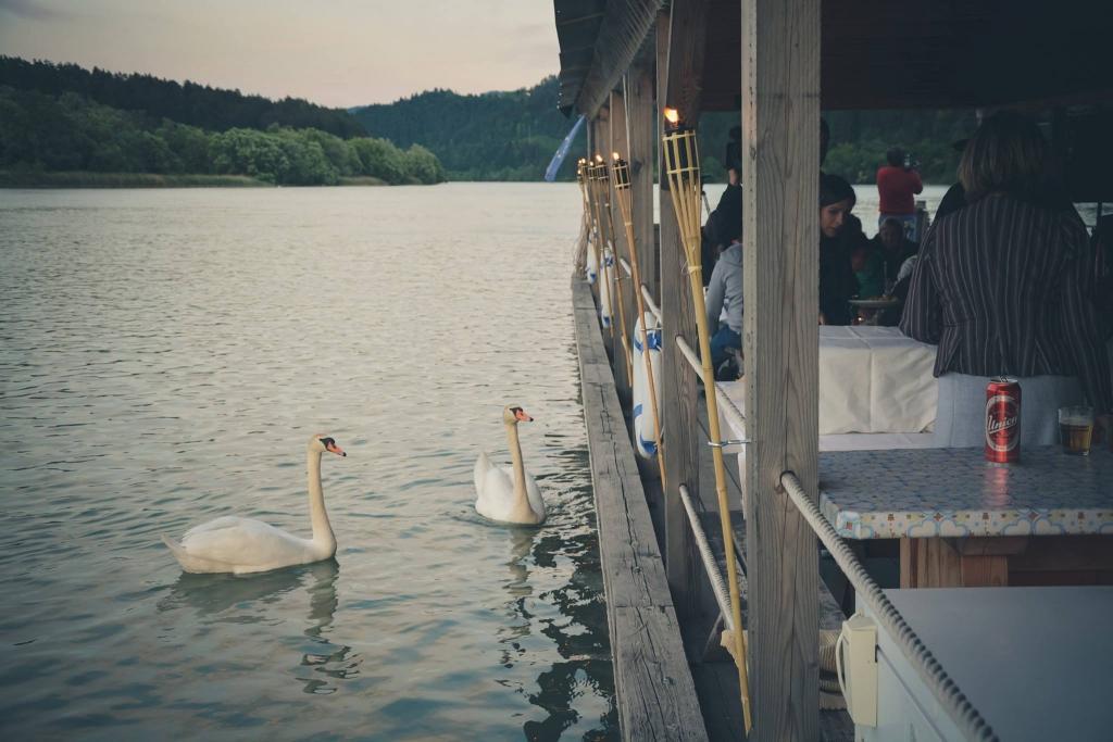Splavarjenje na reki Dravi, Koroška gallery photo no.7