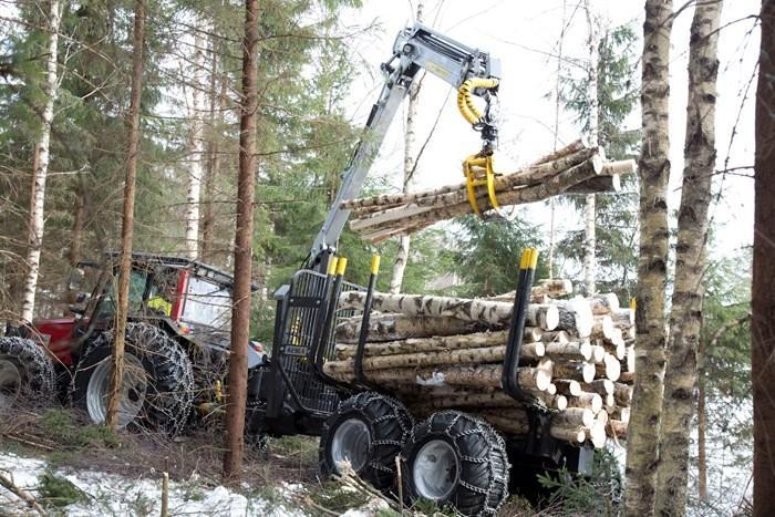 Strojna sečnja gozda, gozdarske storitve Postojna, odkup in prodaja lesa, Postojna gallery photo no.3