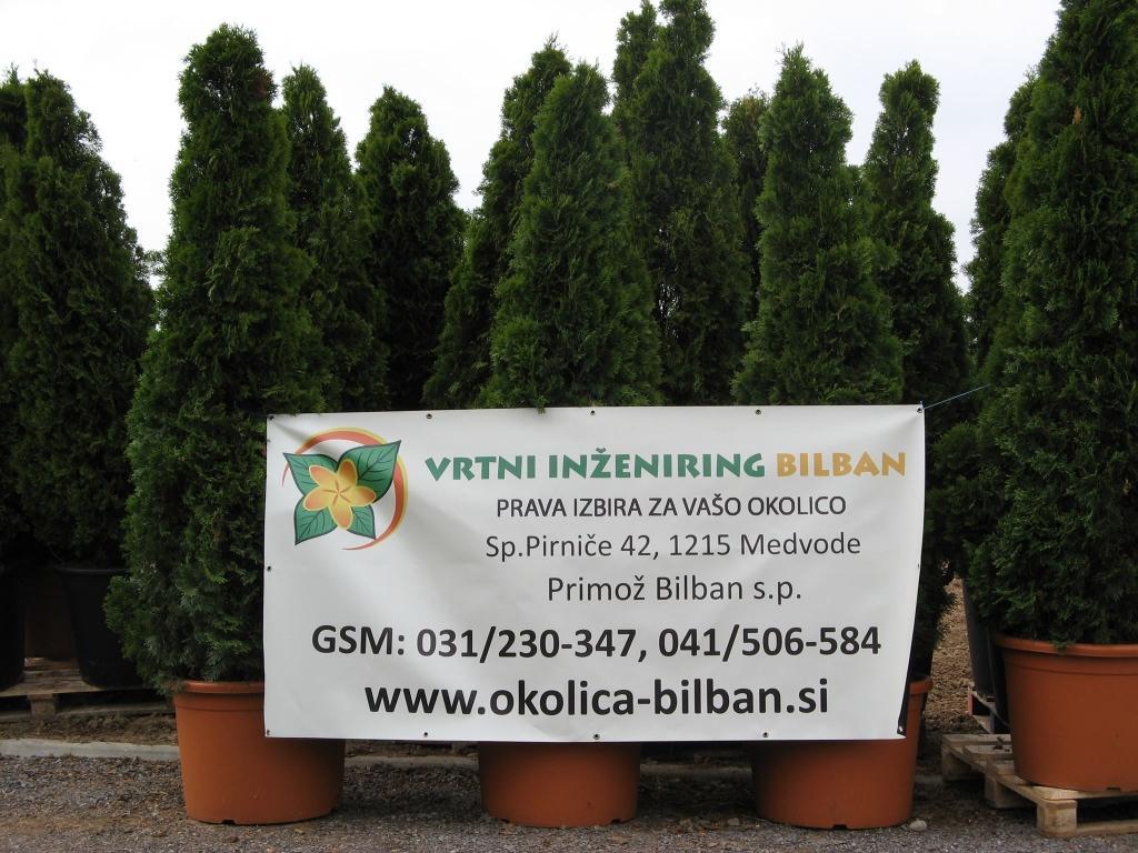Tlakovanje dvorišč - Vrtni inženiring Bilban, Medvode gallery photo no.1