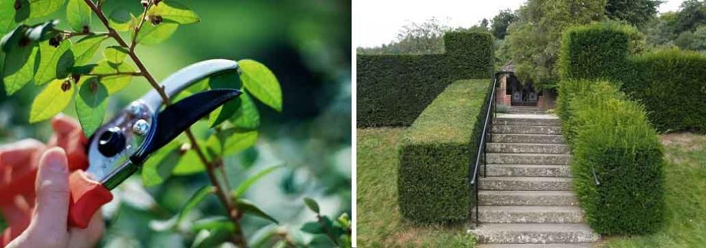 Tlakovanje dvorišč - Vrtni inženiring Bilban, Medvode gallery photo no.6