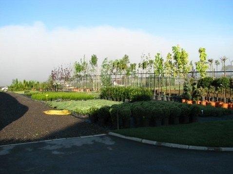 Tlakovanje dvorišč - Vrtni inženiring Bilban, Medvode gallery photo no.11
