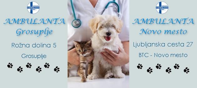 Trgovina za male živali Buba Grosuplje - Hrana za male živali, hrana za pse, mačke in glodalce gallery photo no.3