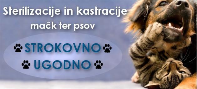 Trgovina za male živali Buba Grosuplje - Hrana za male živali, hrana za pse, mačke in glodalce gallery photo no.4