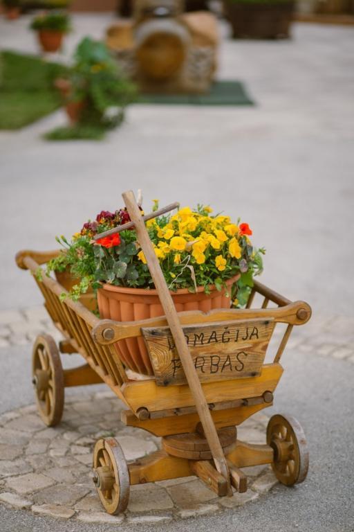 Turistična kmetija Firbas, Štajerska-Pomurje-Prekmurje gallery photo no.12