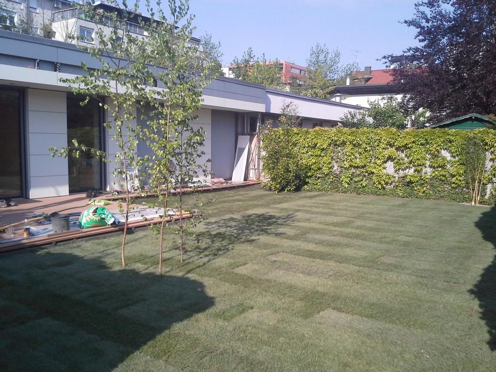 Urejanje, vzdrževanje vrtov, polaganje, setev trave, obrezovanje drevja, žive meje - Vrtnarstvo Šink gallery photo no.19