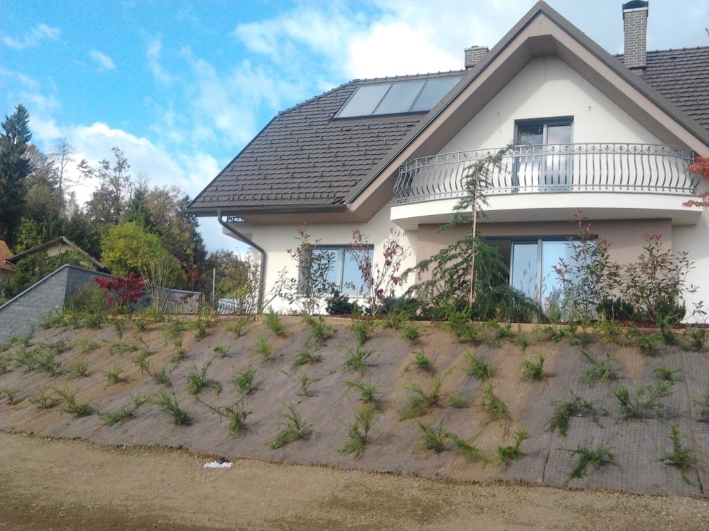 Urejanje, vzdrževanje vrtov, polaganje, setev trave, obrezovanje drevja, žive meje - Vrtnarstvo Šink gallery photo no.21