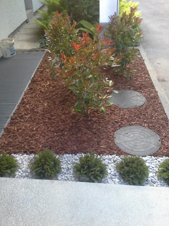 Urejanje, vzdrževanje vrtov, polaganje, setev trave, obrezovanje drevja, žive meje - Vrtnarstvo Šink gallery photo no.33