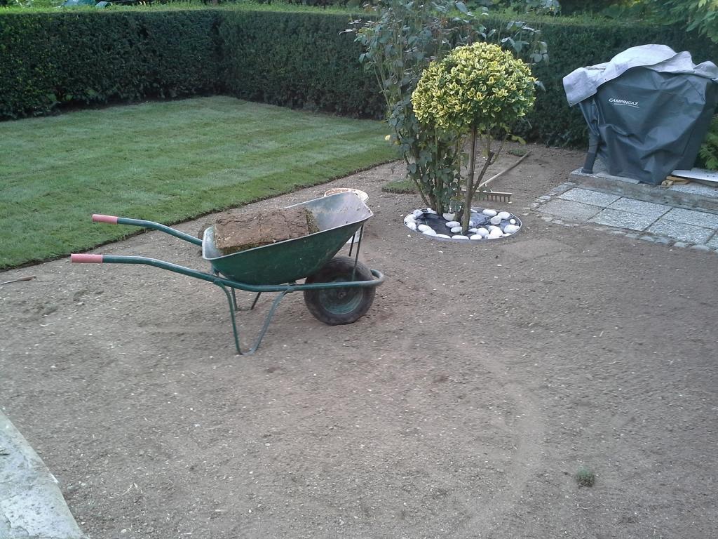 Urejanje, vzdrževanje vrtov, polaganje, setev trave, obrezovanje drevja, žive meje - Vrtnarstvo Šink gallery photo no.34