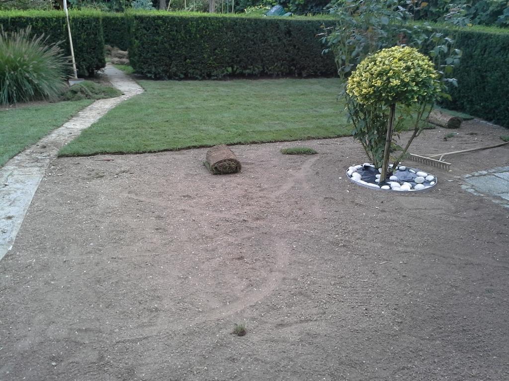 Urejanje, vzdrževanje vrtov, polaganje, setev trave, obrezovanje drevja, žive meje - Vrtnarstvo Šink gallery photo no.35